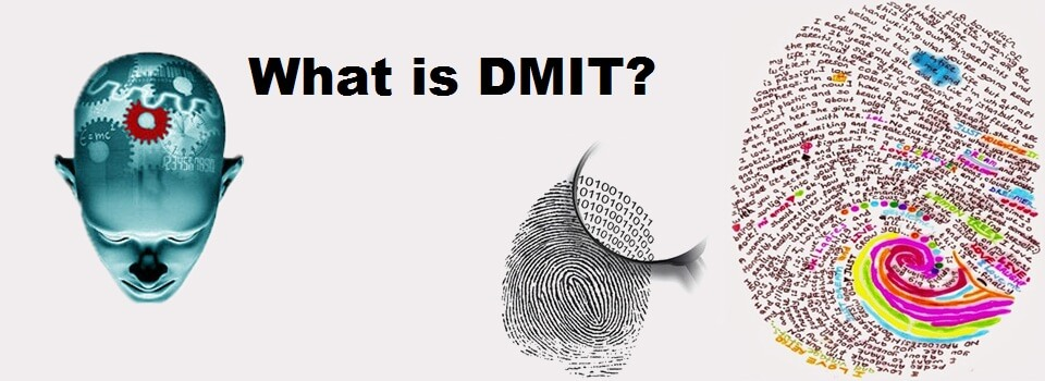 what is DMIT